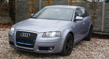 Audi A3 1.6 MPI Xenony Alusy MP3 Parktronik Serwisowana Opłacona Gwarancja
